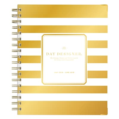 2018-2019 Blue Sky 6H x 8W Planner Day Designer Gold Stripe Matte Lam. Weekly/Monthly (108321)