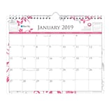 2019 Blue Sky Wall Calendar BS Bca Ale H x andra 11 H x 8.75  W RY Monthly Wirebound (101632-19)