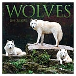 2019 TF Publishing 7 X 7 Wolves Mini Calendar (19-2012)