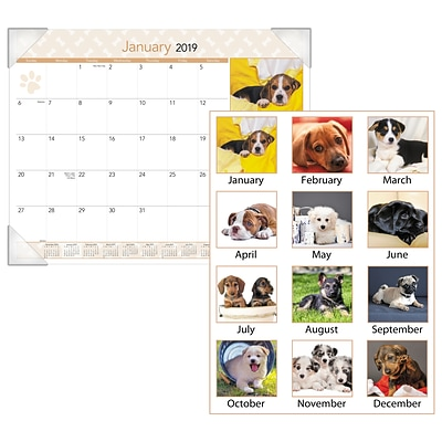 AT-A-GLANCE® Puppies Desk Pad, 12 Months, January Start, 22 x 17 (DMD166-32-19)