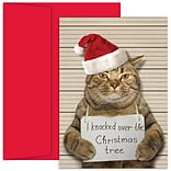 JAM Paper® Christmas Cards Set, Bad Cat, 18/Pack (526915900)