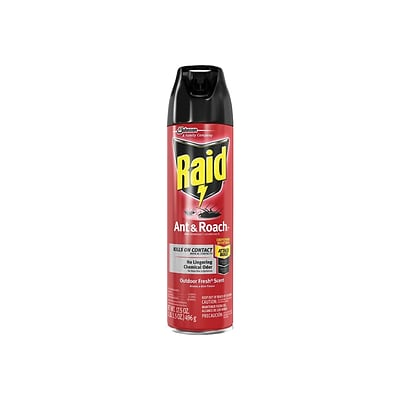 Raid Ant & Roach Killer 26 Aerosol for Ants & Roaches, Outdoor Fresh Scent, 17.5 oz. (669798)