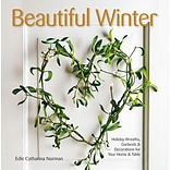 Beautiful Winter Book