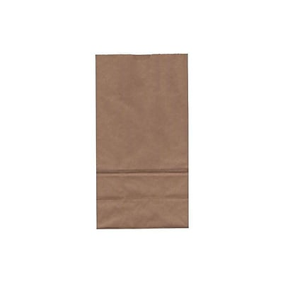 JAM Paper Kraft Lunch Bags, 11H x 6W x 3.5D, Brown, 25/Pack