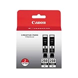 Canon PGI 250PGBK XL Twin Black Ink Cartridge, High Yield, 2/Pack (6432B004)