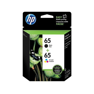 HP 65 Color Combination Ink Cartridges, 2/Pack (T0A36AN#140)