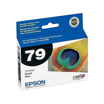 Epson 79 Black Ink Cartridge, High Yield (T079120)