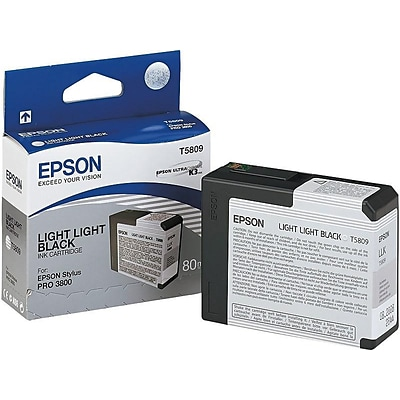 Epson T580 Ink Cartridge, Standard (T580900)