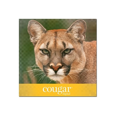 Domtar Cougar Digital 10% Recycled 8.5 x 11 Laser Paper, 70 lbs., 98 Brightness, 500/Ream (2826)