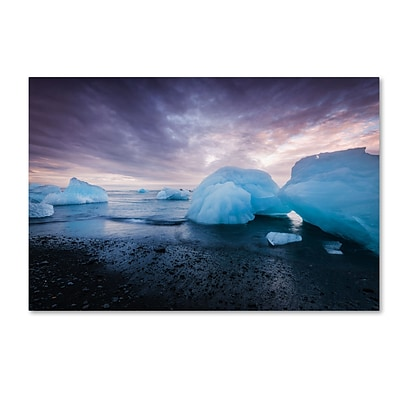 Trademark Fine Art Philippe Sainte-Laudy Cold Light 12 x 19 Canvas Stretched (190836290666)