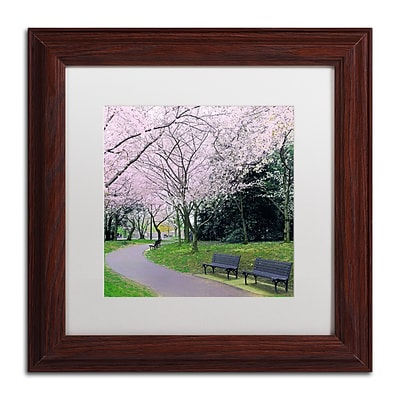 Trademark Fine Art CATeyes Spring Path 11 x 11 Matted Framed (190836099238)