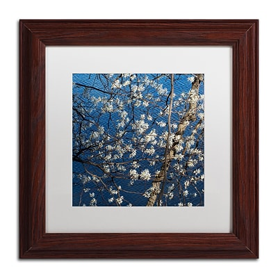 Trademark Fine Art Kurt Shaffer Springtime at the Lake 11 x 11 Matted Framed (886511963047)