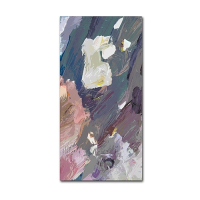 Trademark Fine Art David Lloyd Glover Bird Street 10 x 19 Canvas Stretched (190836228201)