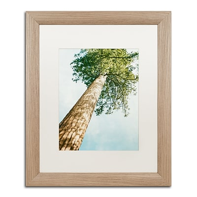 Trademark Fine Art Ariane Moshayedi Giant Tree 16 x 20 Matted Framed (190836268290)