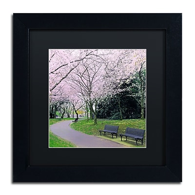Trademark Fine Art CATeyes Spring Path 11 x 11 Matted Framed (190836099047)