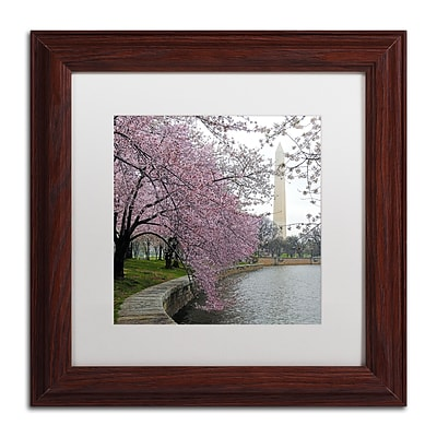 Trademark Fine Art CATeyes Washington Blossoms 11 x 11 Matted Framed (190836099894)