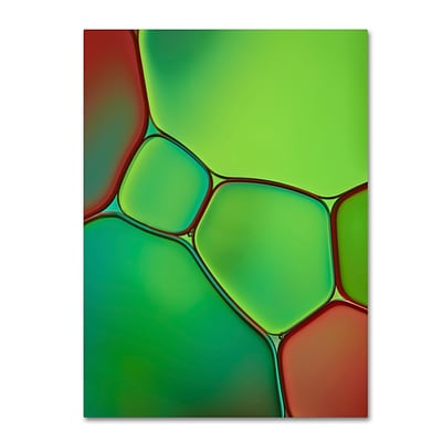 Trademark Fine Art Cora Niele Stained Glass IV 24 x 32 Canvas Stretched (190836254866)