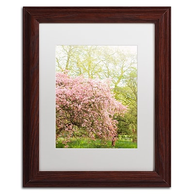 Trademark Fine Art Ariane Moshayedi Pink Cherry Blossoms 11 x 14 Matted Framed (190836273201)