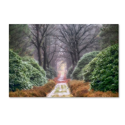 Trademark Fine Art Cora Niele Rhododendron Lane 12 x 19 Canvas Stretched (190836316809)