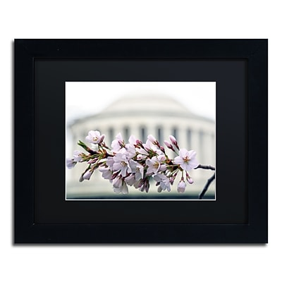 Trademark Fine Art CATeyes Jefferson Memorial Blossoms 11 x 14 Matted Framed (190836098606)