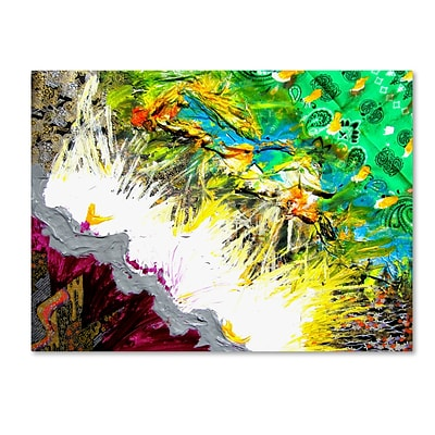 Trademark Fine Art Amanda Rea Luce 14 x 19 Canvas Stretched (190836064601)