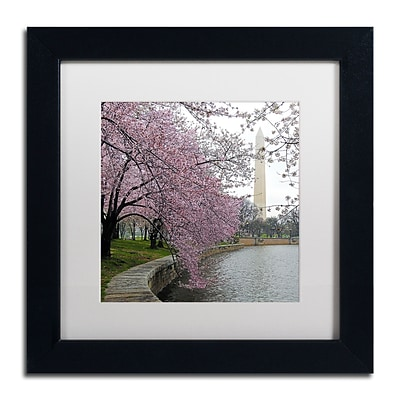 Trademark Fine Art CATeyes Washington Blossoms 11 x 11 Matted Framed (190836099719)