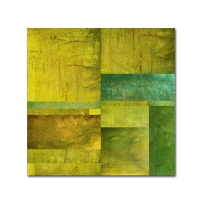 Trademark Fine Art Michelle Calkins Essence of Green 14 x 14 Canvas Stretched (190836071340)