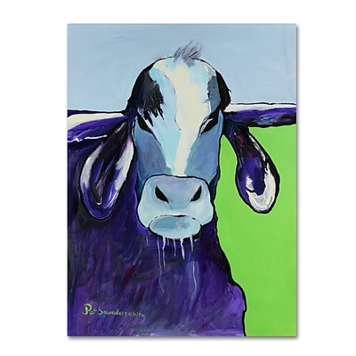 Trademark Fine Art Pat Saunders-White Bull Drool 14 x 19 Canvas Stretched (190836063550)