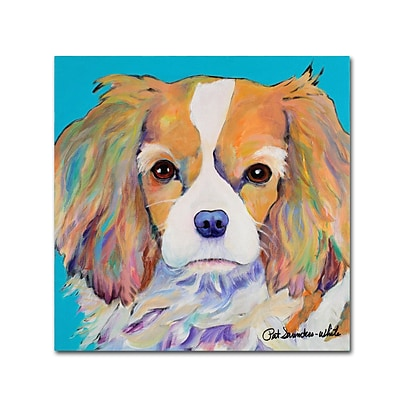 Trademark Fine Art Pat Saunders-White Dagney 14 x 14 Canvas Stretched (190836058594)