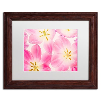 Trademark Fine Art Cora Niele Three Cerise Pink Tulips 11 x 14 Matted Framed (190836310180)