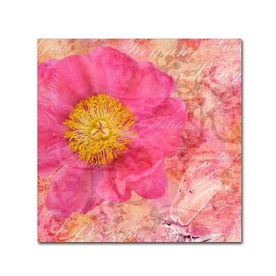 Trademark Fine Art Cora Niele Peony - Feminine Beauty 18 x 18 Canvas Stretched (190836312474)