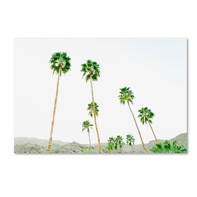 Trademark Fine Art Ariane Moshayedi Palms 3 12 x 19 Canvas Stretched (190836271986)