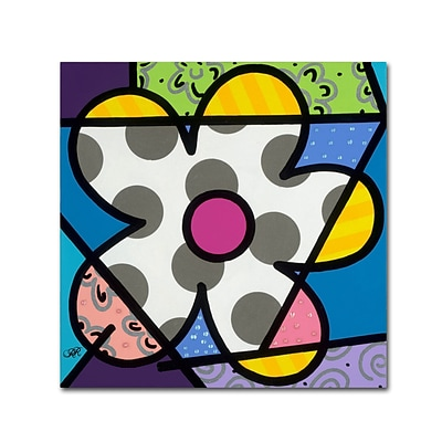 Trademark Fine Art Roberto Rafael Big Flower III 14 x 14 Canvas Stretched (190836279944)