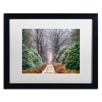 Trademark Fine Art Cora Niele Rhododendron Lane 16 x 20 Matted Framed (190836316793)