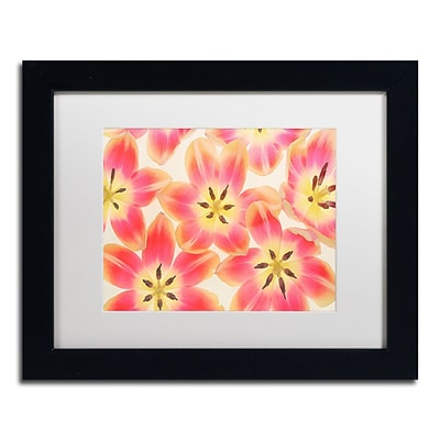 Trademark Fine Art Cora Niele Yellow and Coral Red Tulips 11 x 14 Matted Framed (190836312023)