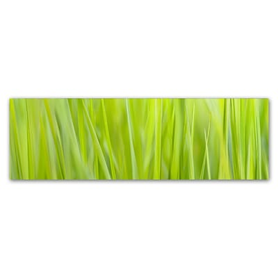 Trademark Fine Art Cora Niele Green Grass Scape 8 x 24 Canvas Stretched (190836317455)