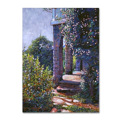 Trademark Fine Art David Lloyd Glover Climbing Roses 14 x 19 Canvas Stretched (190836227105)