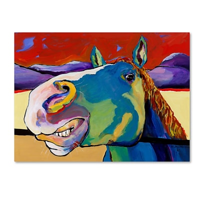 Trademark Fine Art Pat Saunders-White Eye to Eye 14 x 19 Canvas Stretched (190836059713)