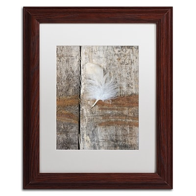 Trademark Fine Art Cora Niele Feather on Wood I 11 x 14 Matted Framed (190836255504)