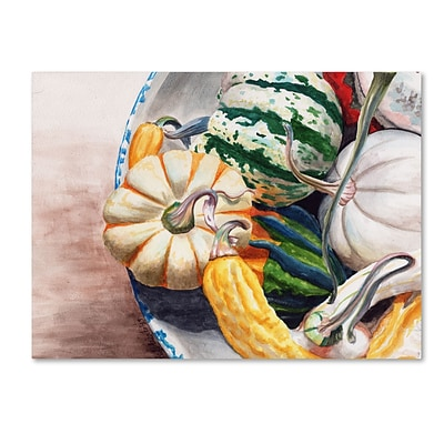 Trademark Fine Art Jennifer Redstreake Autumn Gourds 14 x 19 Canvas Stretched (886511941434)