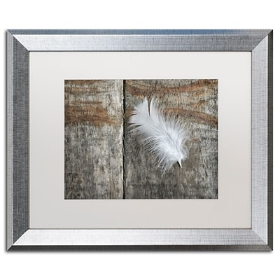 Trademark Fine Art Cora Niele Feather on Wood II 16 x 20 Matted Framed (190836255610)
