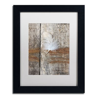 Trademark Fine Art Cora Niele Feather on Wood I 11 x 14 Matted Framed (190836255382)