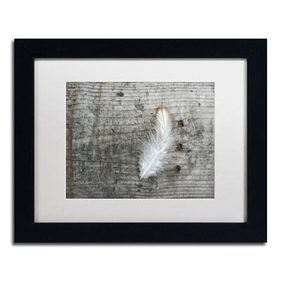 Trademark Fine Art Cora Niele Feather on Rough Wood 11 x 14 Matted Framed (190836255245)