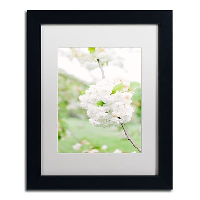 Trademark Fine Art Ariane Moshayedi White Cherry Blossoms 4 11 x 14 Matted Framed (190836276868)