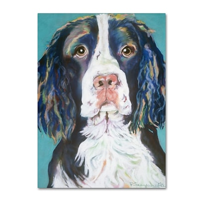 Trademark Fine Art Pat Saunders-White Dodger 14 x 19 Canvas Stretched (190836059072)