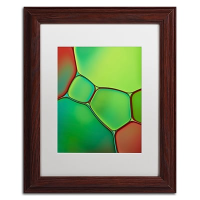 Trademark Fine Art Cora Niele Stained Glass IV 11 x 14 Matted Framed (190836254941)