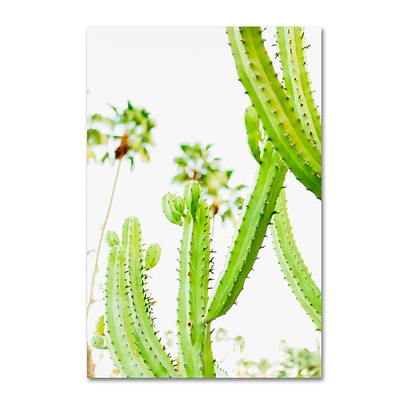 Trademark Fine Art Ariane Moshayedi Cactus Palm 12 x 19 Canvas Stretched (190836265541)