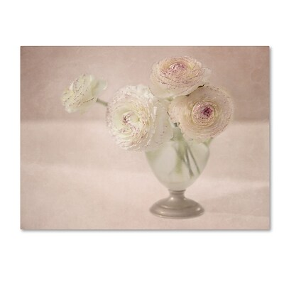 Trademark Fine Art Cora Niele White Persian Buttercups Posy 14 x 19 Canvas Stretched (190836261345)