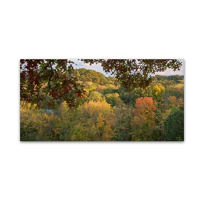 Trademark Fine Art Kurt Shaffer Late Afternoon October Color 10 x 19 Canvas Stretched (886511964945)