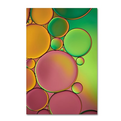 Trademark Fine Art Cora Niele Green and Orange Drops 12 x 19 Canvas Stretched (190836253586)